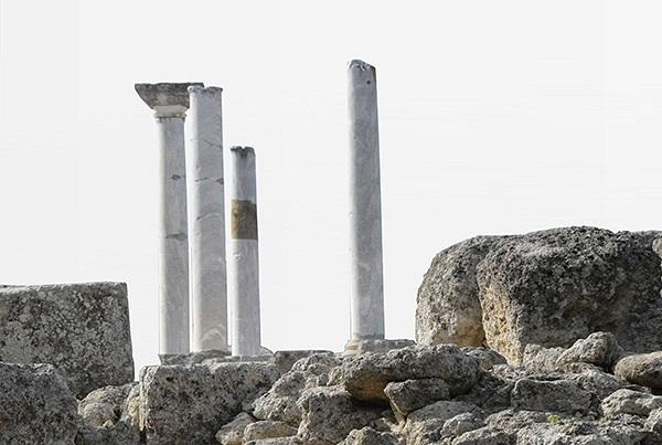 Fondazione Archeologica Canosina Web Site 2015