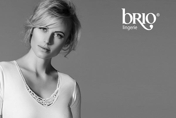 Briolingerie Web Site